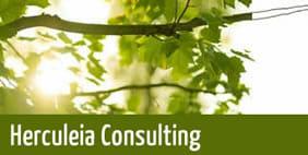 Herculeia Consulting